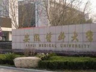四川本科二批投档开录 理科调档线排名前十有7所医科大学