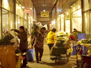 实拍:情人节前夕凌晨3点,这是成都花商们最忙碌的时刻