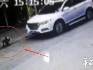 4岁男孩路边玩耍被撞身亡 肇事车逃逸 监控还原全过程