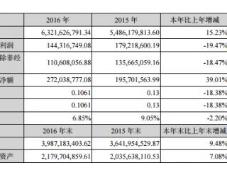 红旗连锁财报:拥抱互联网,2016年进店消费达3.56亿人次
