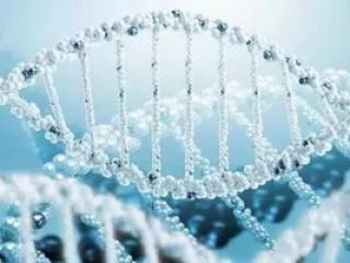 消费级基因检测公司23魔方完成1亿元新一轮融资,经纬中国领投