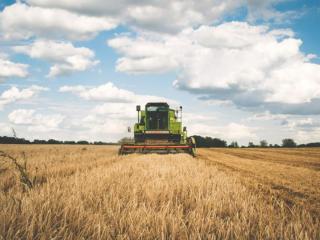 全球首个靠改造农业而盈利的区块链公司?成都团队领跑!