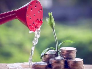 上千家企业免税收入近26亿元 成都迎来研发的最佳时期