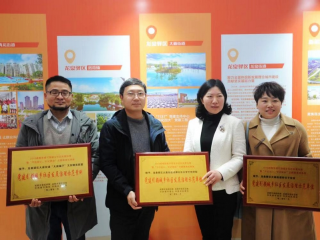 龙泉驿区C位出道 全市主题教育成果展荣获多项大奖