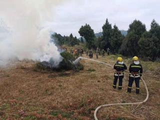 開展應急演練 確保森林防火工作落實到位