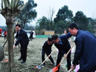 武侯区干部群众开展义务植树活动