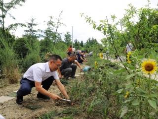 温江区和盛镇:植绿补绿,不断优化人居环境