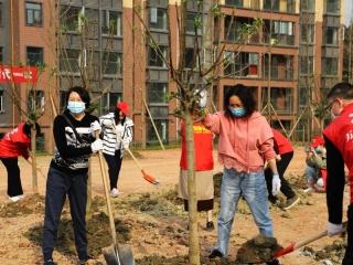 """植樹造林改善環境 萬安街道再添""""新綠"""""""