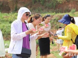 瓜果飘香!石桥街道第一届哈密瓜采摘节来了,活动持续到6月
