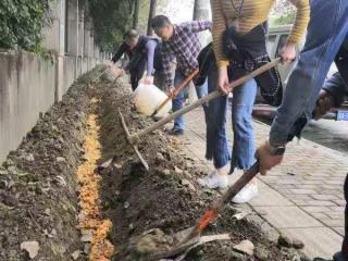 科技賦能社區環保 成都中海社區探索特色垃圾分類模式